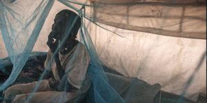 Sudan-nets