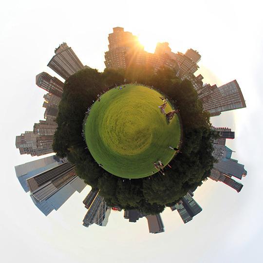 Central_park_grass2