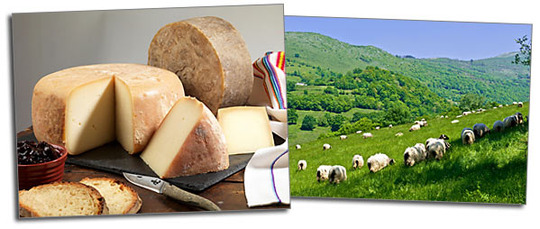 Fromages_ossau_iraty