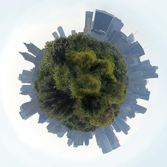 Central_park_top2