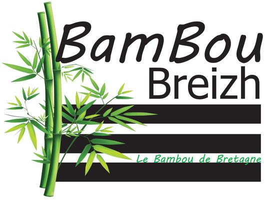 Logo_bambou_breizh_10x7_5