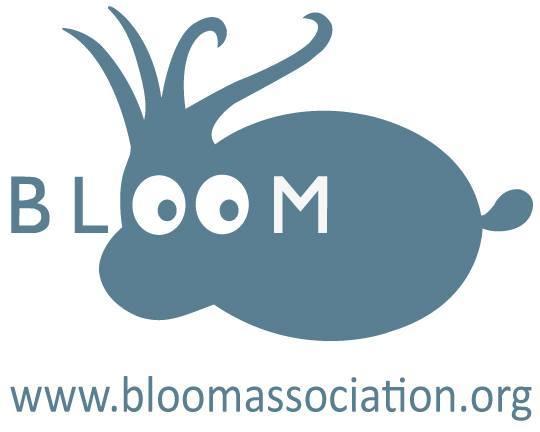 Bloomok