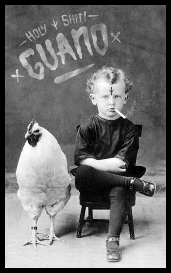 Guano_cover14-03-26