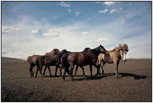 Mongolian-landscapes-and-photography
