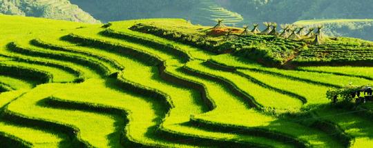 Circuit-vietnam-nord-et-laos-18-jours-114649