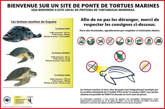 Kwata-panneau-tortue-plage