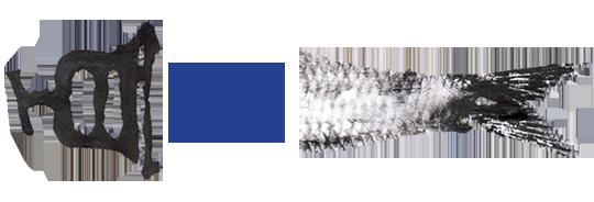 Logo_pas