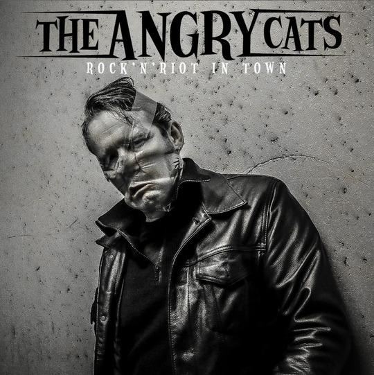 Angrycats_b1