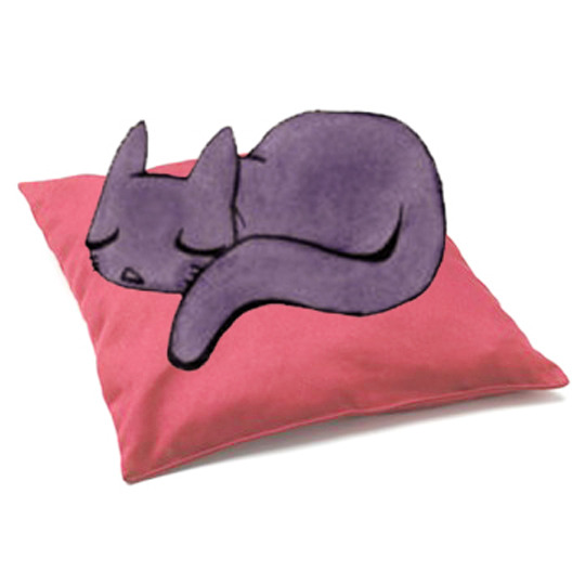 Chat_coussin