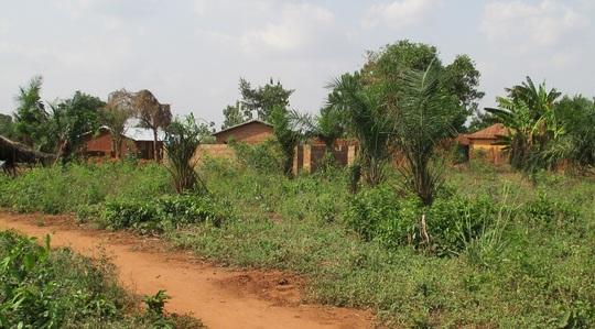 Cheminvillage