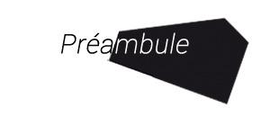 Pr_ambule_essai_1_copie